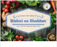 Learn the laws of Bishul on Shabbat